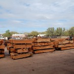 Pallets of Mesquite Rough Cants