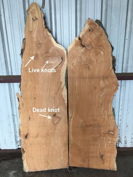 Live knots and dead knots image on Faifer and Co. edge slab